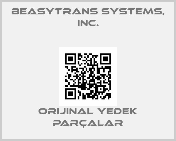 BeasyTrans Systems, Inc.
